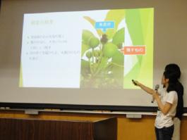 田辺ゼミ体験授業の発表