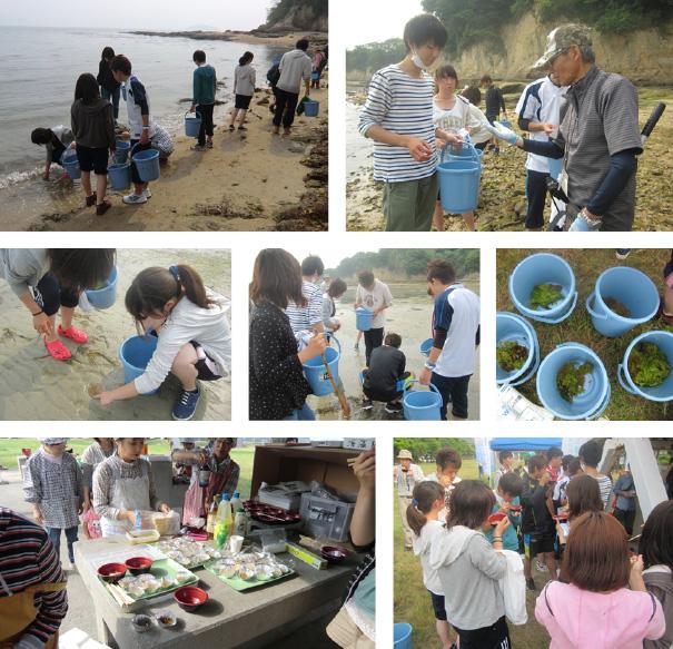 マダイ養殖の給餌と海藻の採集・調理