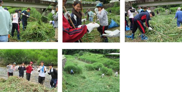 河川漁場保全のためのヨシ刈取りと河川の生態観察3