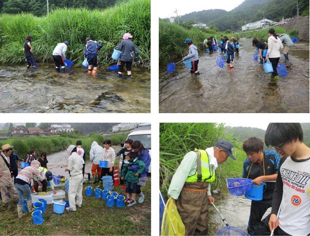 河川漁場保全のためのヨシ刈取りと河川の生態観察4
