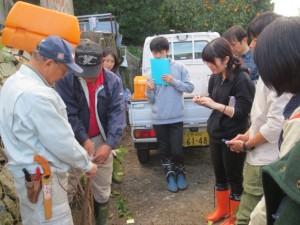 みかん収穫2