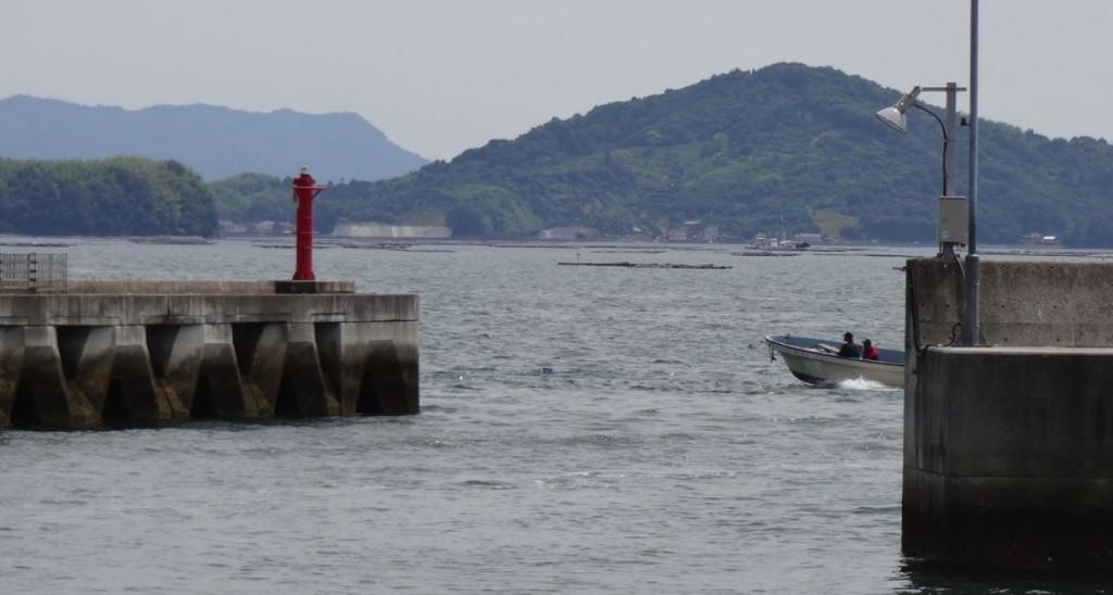 安芸津漁協3