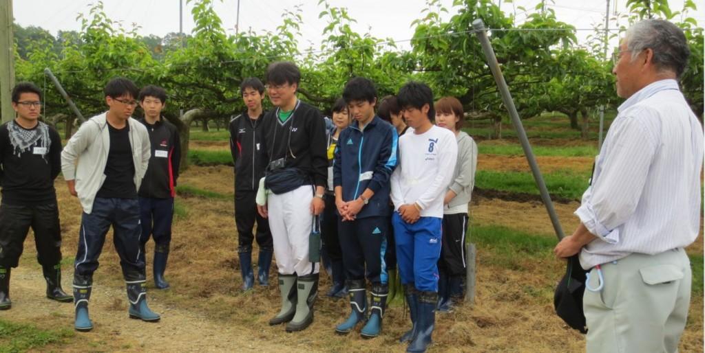世羅大豊農園2
