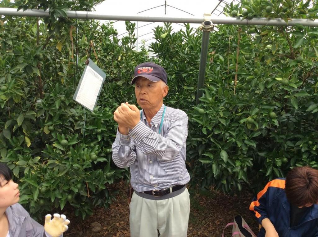 金原さんに摘果の方法を説明して頂きました