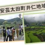 地(知)の拠点 安芸太田町井仁で棚田収穫体験を実施しました。