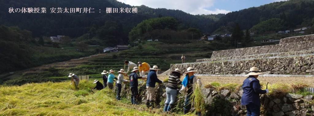 地(知)の拠点大学による地方創生推進事業井仁稲刈