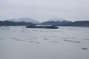 安芸津海域