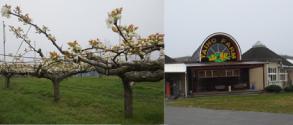 地(知)の拠点大学による地方創生推進事業世羅町 世羅大豊農園