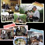 中国新聞に掲載されました(6月28日)「三次市 道の駅ゆめランド布野」地(知)の拠点体験授業