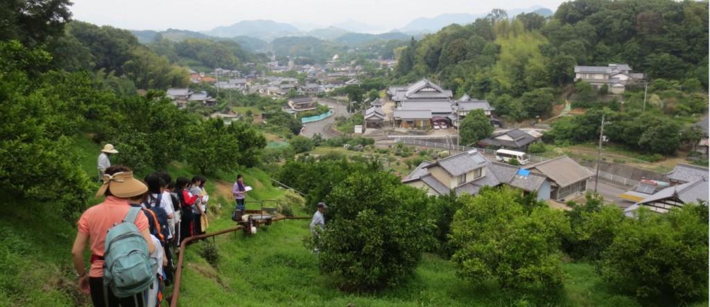 金原農園2